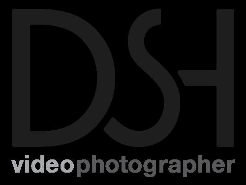 DSH-DanielSolimanHansen-Logo
